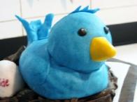 (Zamaknjeni) Tvitertič iz plazme, prekrit s fondantom 2.