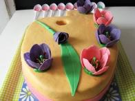 Pa še fotošuting. :) V ozadju dodatni tulipanovi listki.